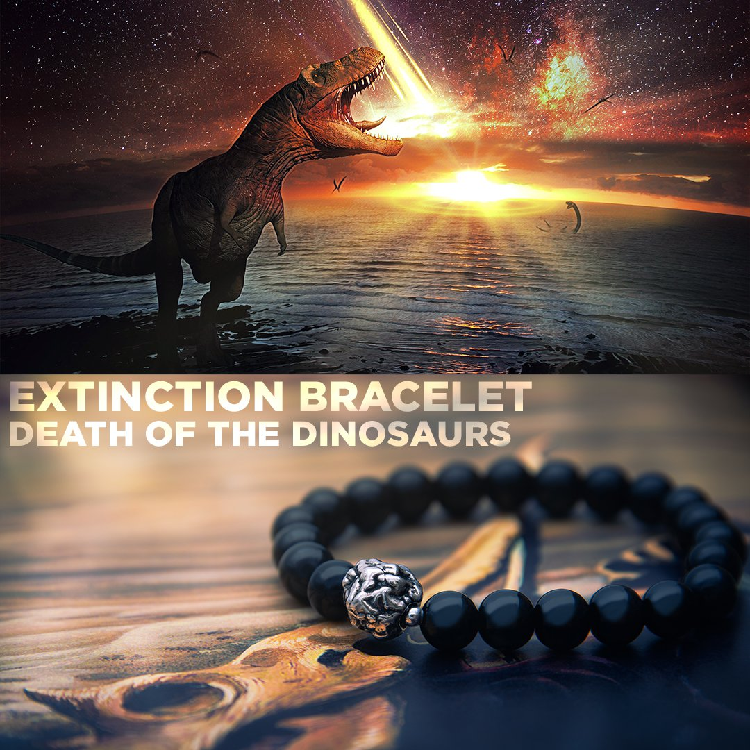 Extinction Bracelet - Death of the Dinosaurs - Infused with K-Pg Boundary Material