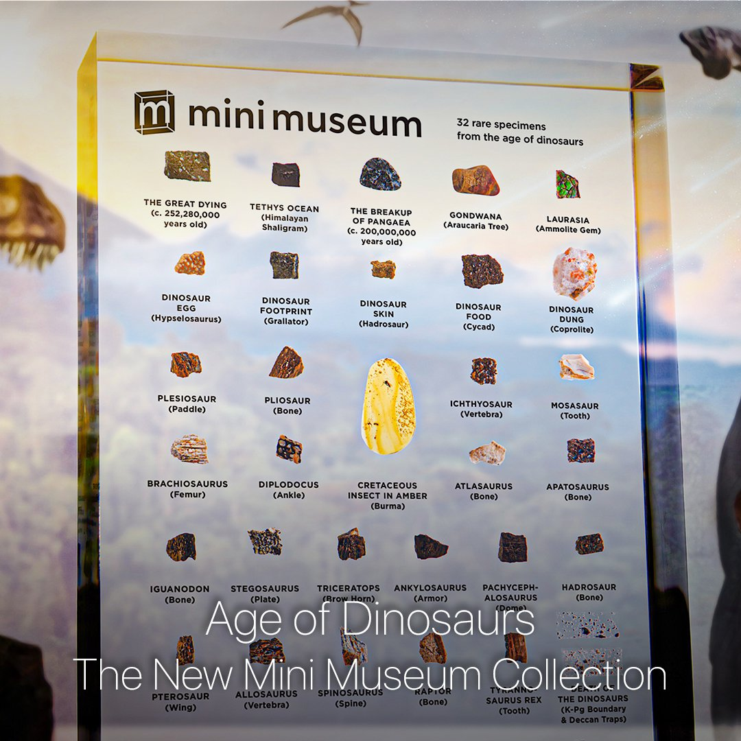 Mini Museum Age of Dinosaurs