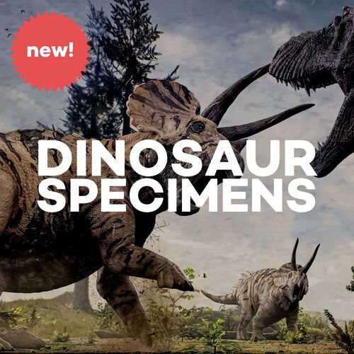 Dinosaurs & Mesozoic Monsters